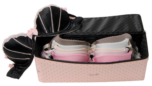 Port_a_bra_travel_case_for_bras_4